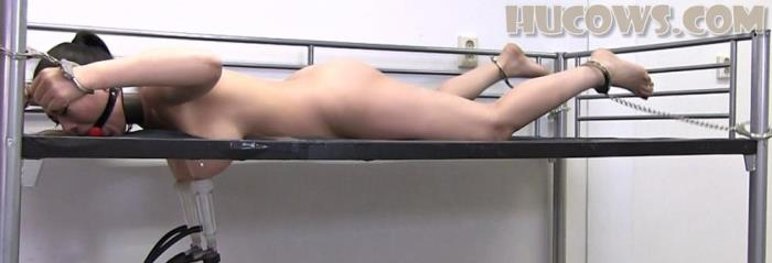 Nyssa Nevers [Nyssa Nevers on the milking bed] [FullHD] HuCows - Nipple torture machines